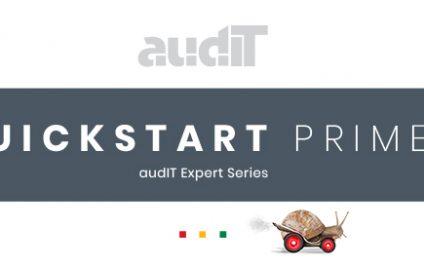Quickstart Primer – audIT Expert Series