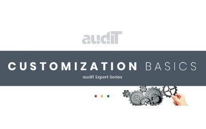 Customization Basics – audIT Expert Series