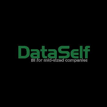 DataSelf Analytics
