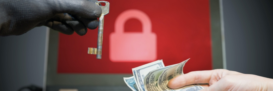 blog-img-what-do-cyber-criminals-want