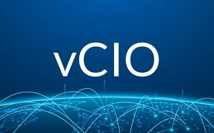 What is a vCIO?