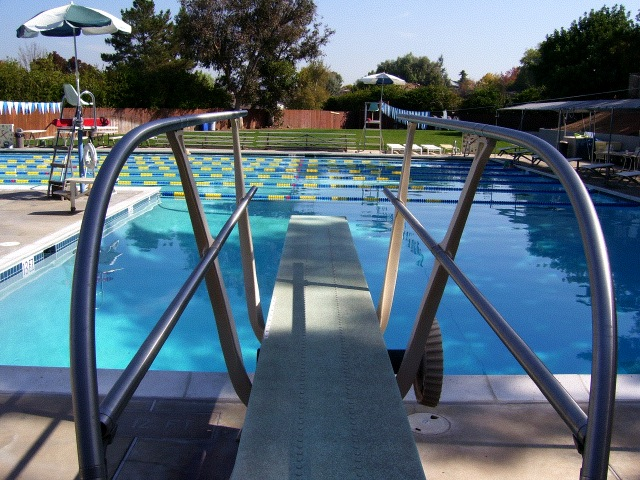view-of-our-diving-board-and-diving-well