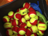 Sports Ball in Melbourne, Whitehorse, Manningham, Templestowe, Doncaster East, Balwyn North Box Hill, Rowville and Vermont South