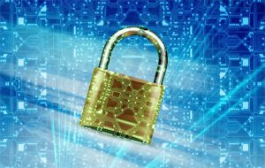 Software security lockdown