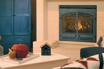 Wood, Gas & Electrical Fireplace, Stove and Inserts Assessories