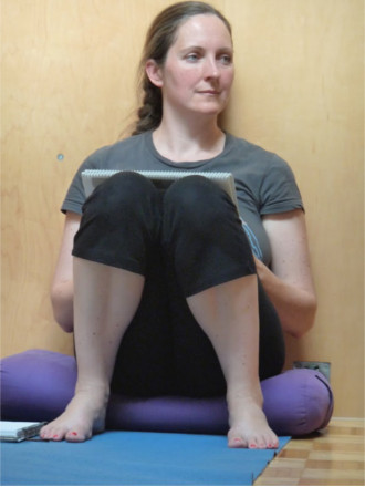 Yoga Teacher Trainings Seattle