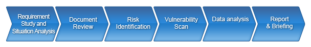 security_assessment
