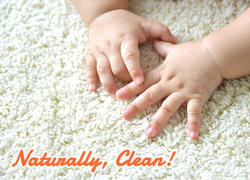 Carpet Cleaning Hampton Roads